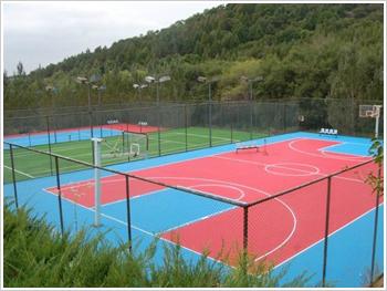 河北篮球场围网分销商 郑州篮球场围网畅销 篮球场围网热卖